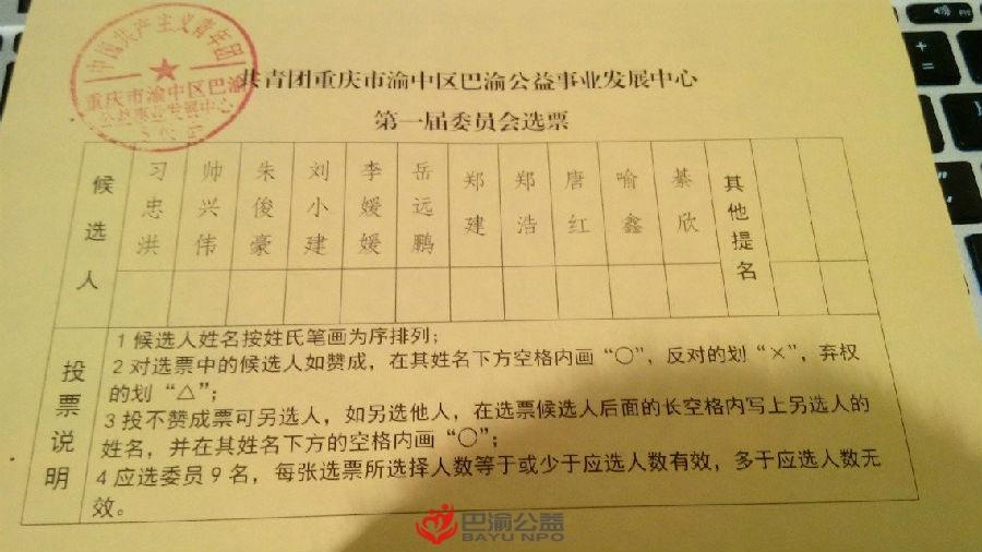 巴渝公益事业发展中心团委正式成立(2015 年 12 月更新)