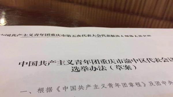 郑建参加共青团渝中区代表会议推选参加市团代会代表