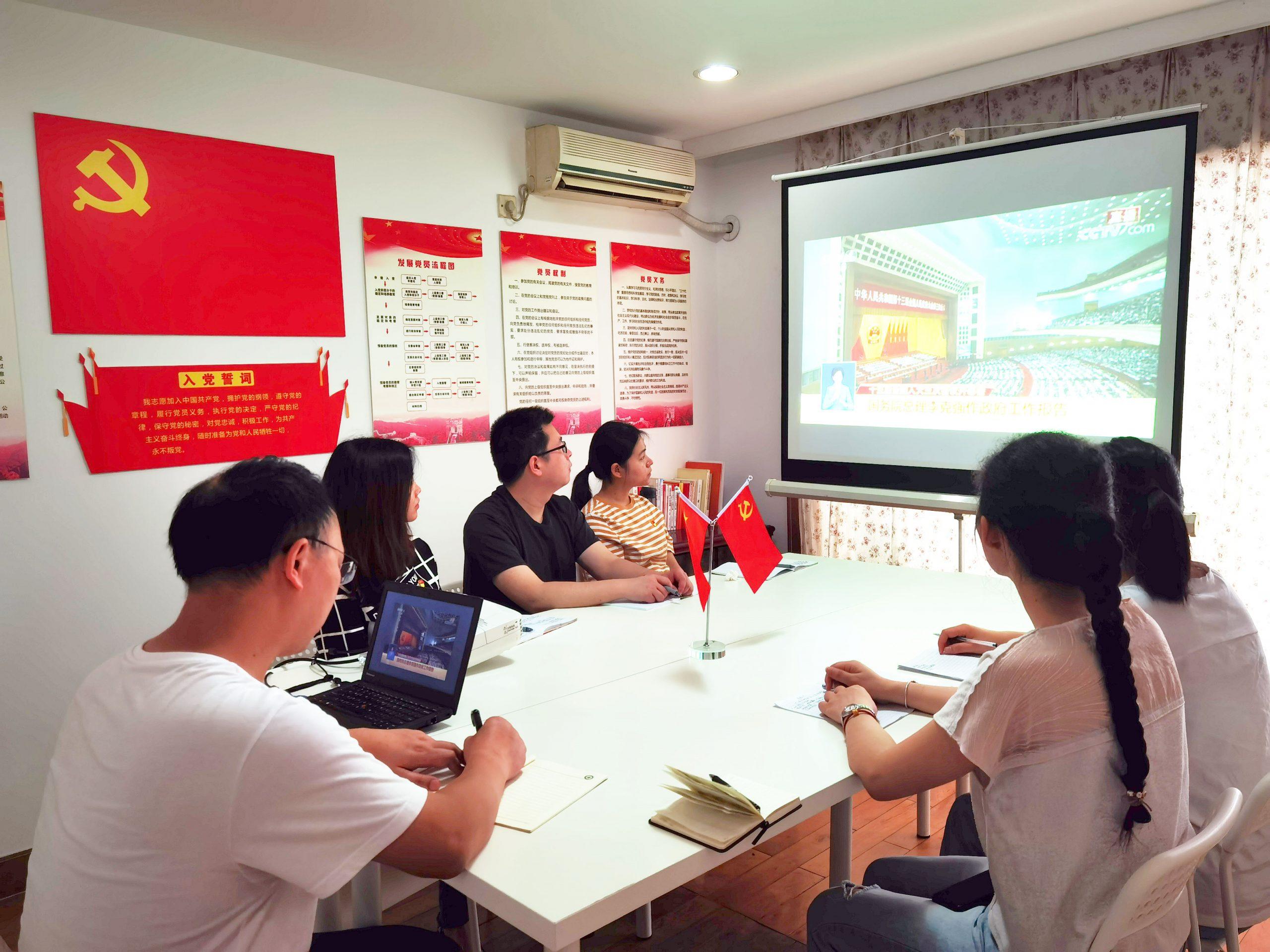 巴渝公益党支部组织收看 2020 两会政府工作报告